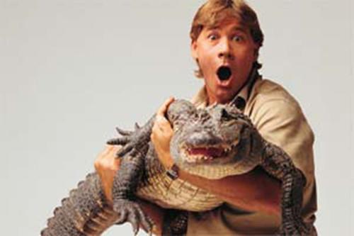 史蒂夫·欧文的欧文:与生猛动物这14年图片