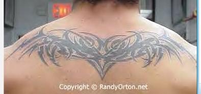 求wwe巨星兰迪奥顿的后背肩胛骨位置的纹身图案正面图片图片
