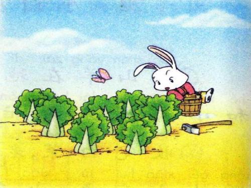 小白兔和小灰兔的故事.图片