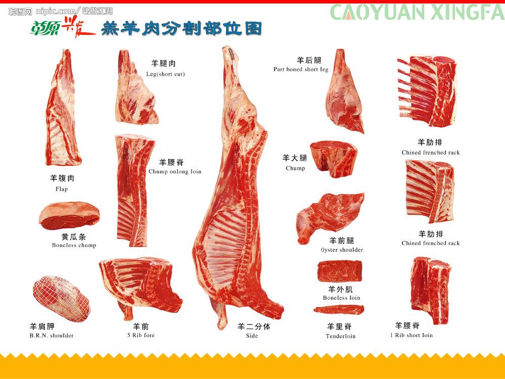 羊肉怎么分割的?给个羊肉分割图最好了.