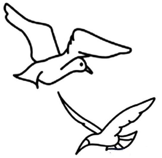 如何画海鸥简笔画 4张