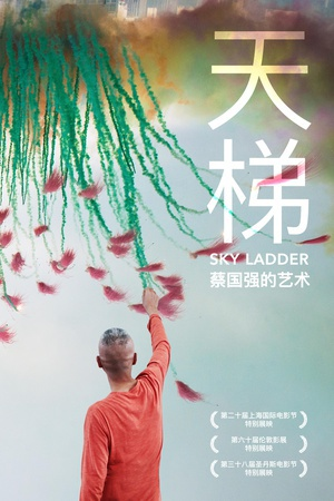 天梯:蔡国强的艺术