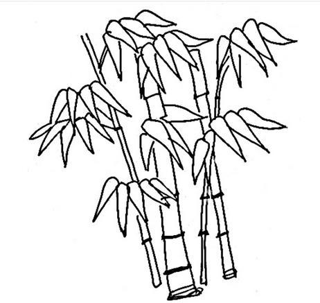 怎么画竹子
