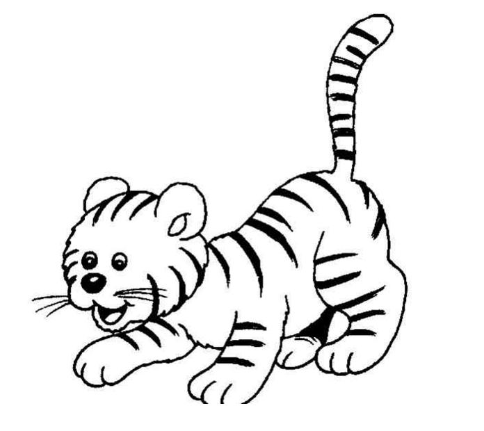 老虎颜色是什么简笔画