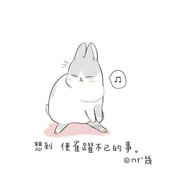 有一只很萌的兔子表情,谁知道名字?图片