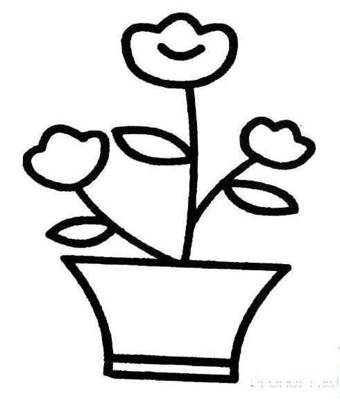 一盆花怎么画简笔画图片