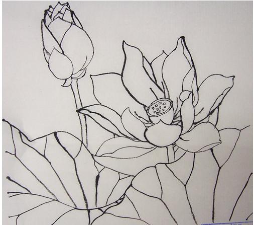 素描画 风景 花朵