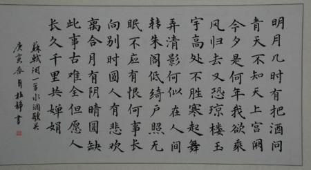 水调歌头硬笔书法九列图片