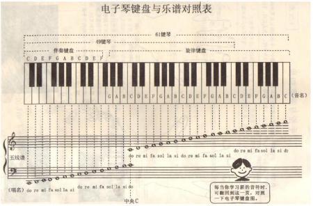 电子琴与简谱对照图片