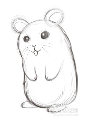 简单仓鼠手绘装饰