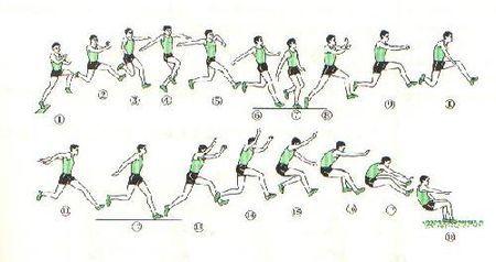 立定三级跳场地画法_本人高中体育生,立定三级跳技巧在哪,例如第二步跨步等