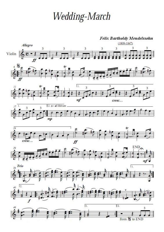 卡农小提琴二重奏谱子 小提琴卡农谱子 卡农小提琴谱 天空之城
