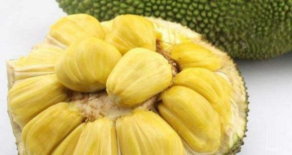 菠萝蜜的核煮多长时间香樟木家具youaiyansedema图片