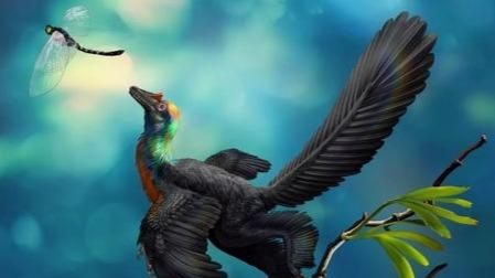 科学家告诉你恐龙到底是什么颜色的?的头图