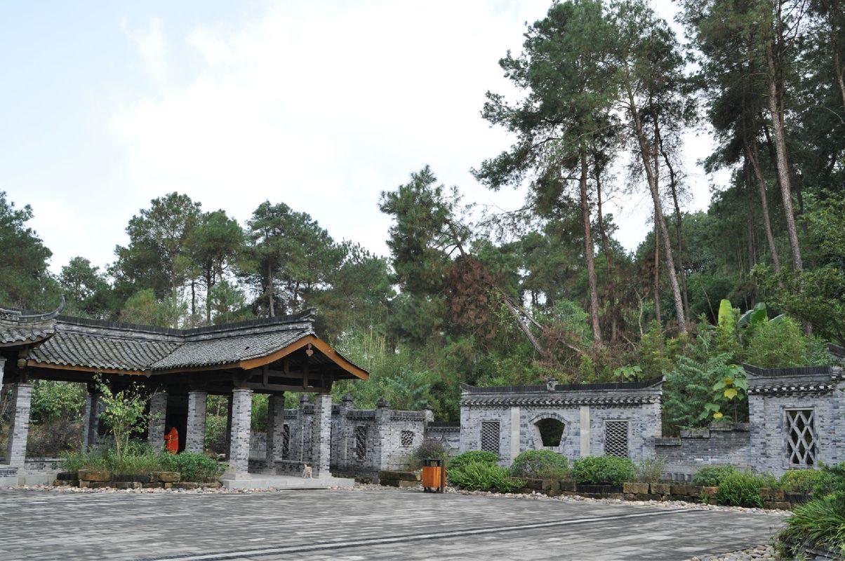 手牵手去爬山-重庆铁山坪森林公园