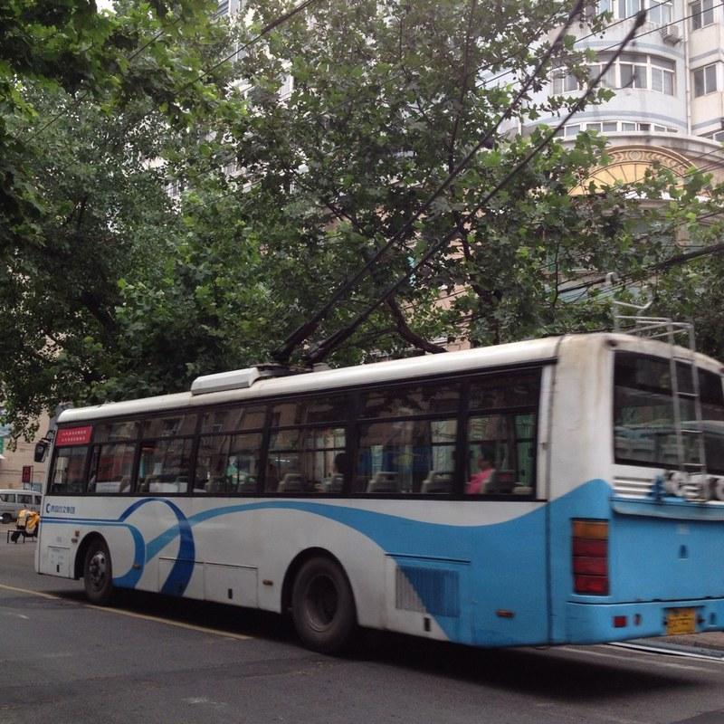 青岛317客车