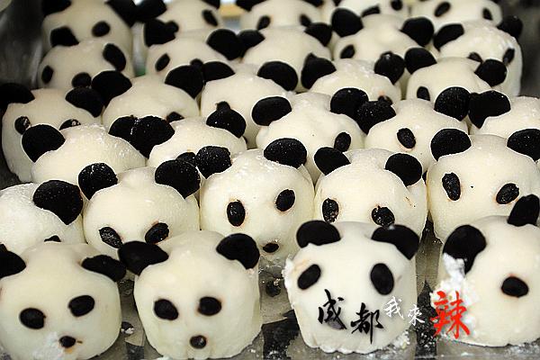 可爱的小熊猫!图片