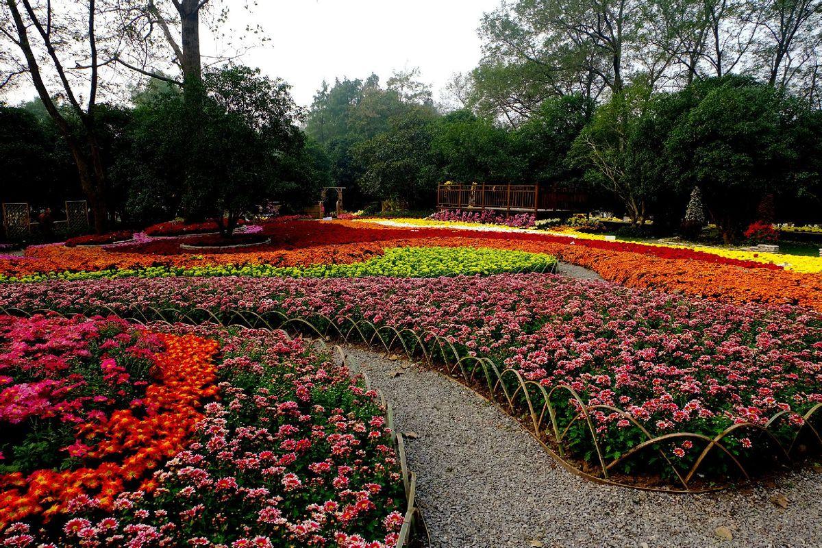 公园图片简笔画彩色