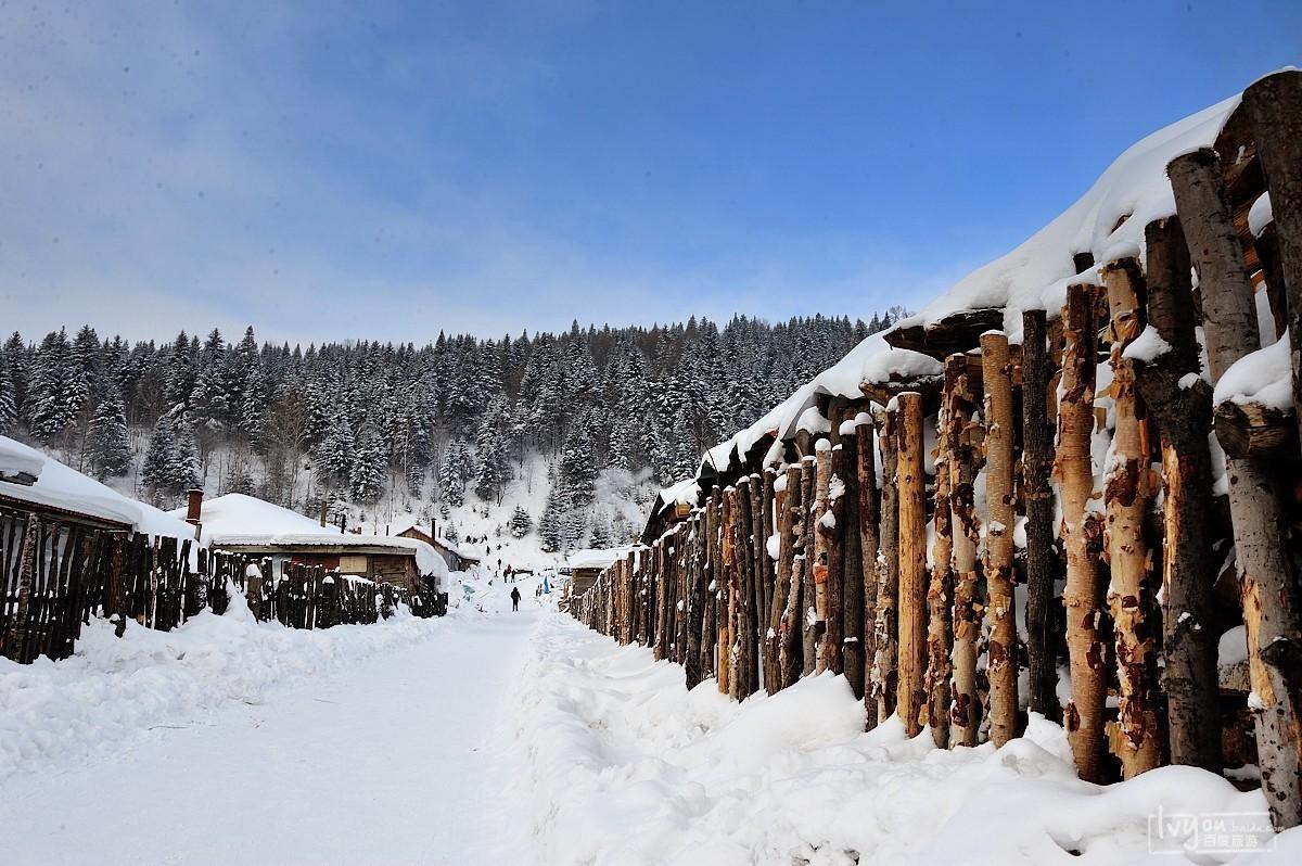 梦幻雪乡,东升穿越,亚布力,镜泊湖,长白山,雾凇岛冰雪图片