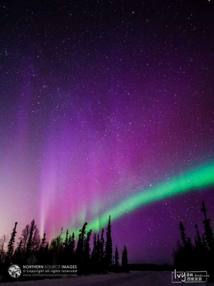 在盛产极光的挪威,瑞典,冰岛和芬兰,那里的人们给全世界展示了最神奇