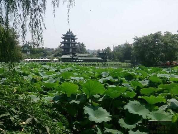 成都市新都区桂湖公园_旅行画册旅行图片_百度旅游