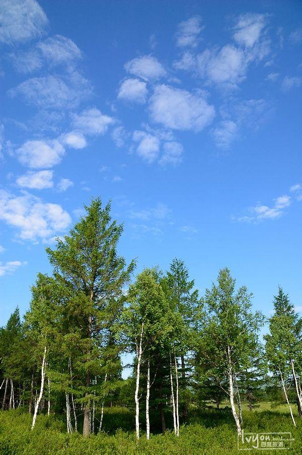 背景 壁纸 风景 天空 桌面 600_902 竖版 竖屏 手机