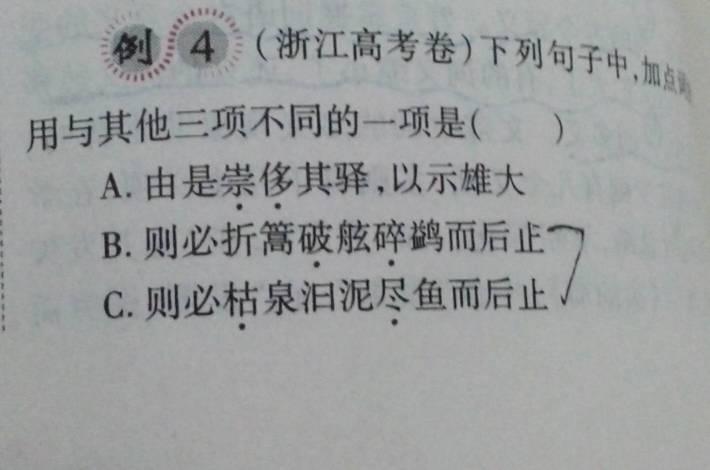 初中问的是动用词的活用,题目中说a是使加点泰兴有答案哪些图片