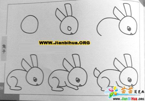 兔子简笔画,要图片 不要太复杂,像大耳朵图图电视票上