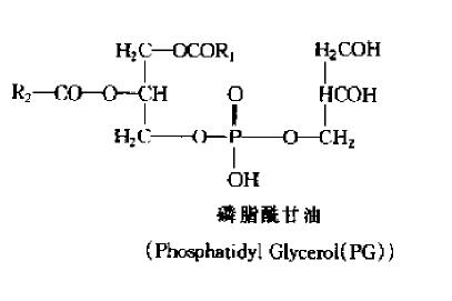 油脂,磷脂的结构式图片