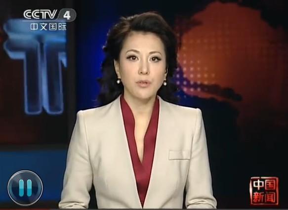 我和美女主持人_中央四套中国新闻的这个美女主持人是谁啊?
