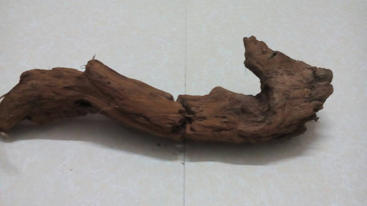 这是什么木头