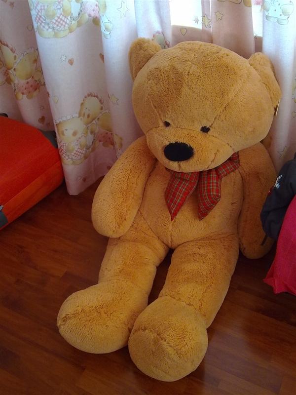 这个图片中的情趣熊叫是泰迪熊?蕾丝蕾丝美女图片玩具内衣图片