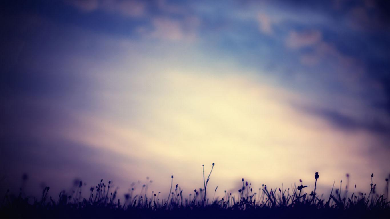 哪位大神有特别好看的背景图片,比如那种浪漫,梦幻,雪景,星空等等的