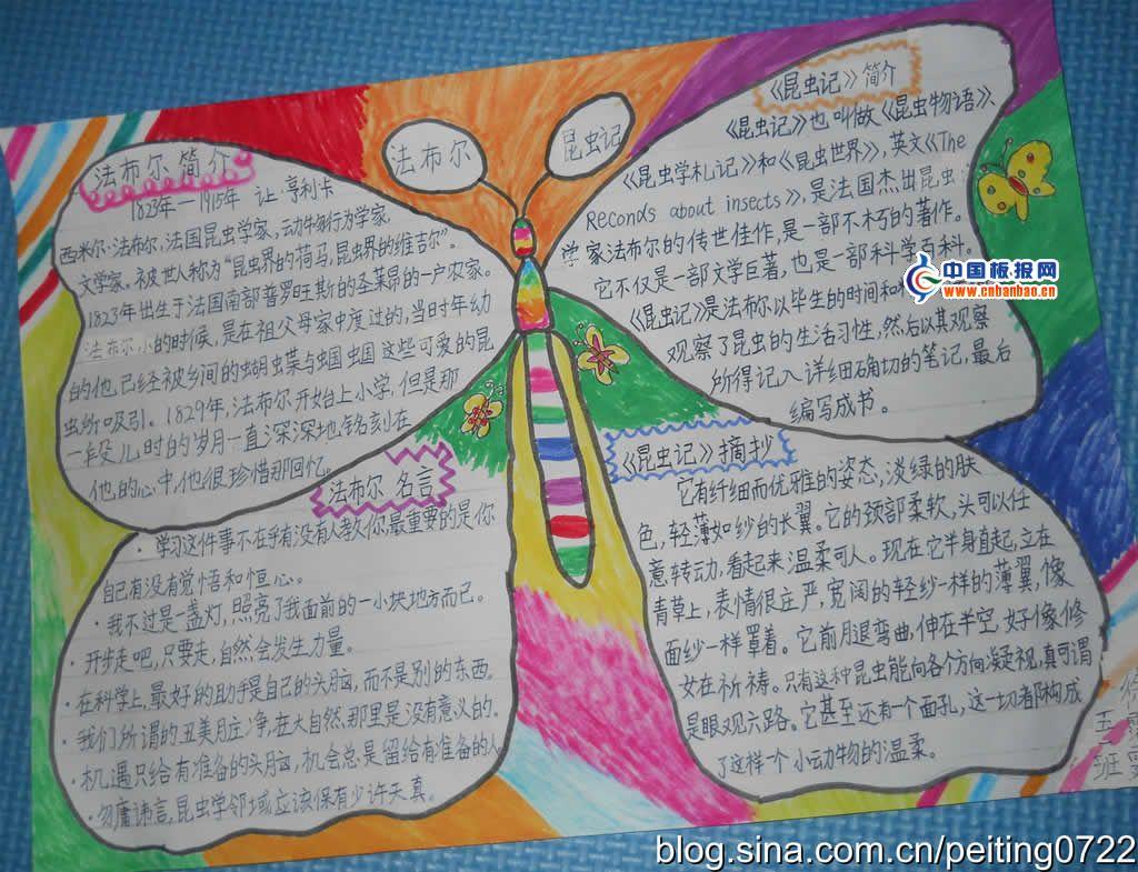 关于昆虫的手抄报如何画图片
