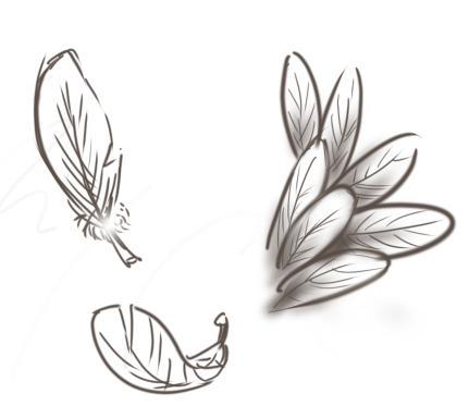 手绘羽毛翅膀花纹怎么画?