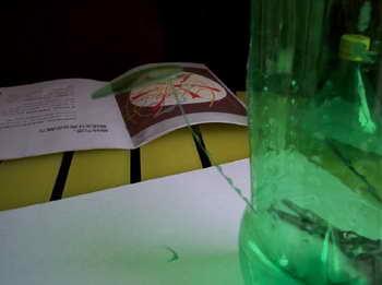 变废为宝diy手工小制作 雪碧瓶制作花瓶图解教程 1先准备一个喝完的