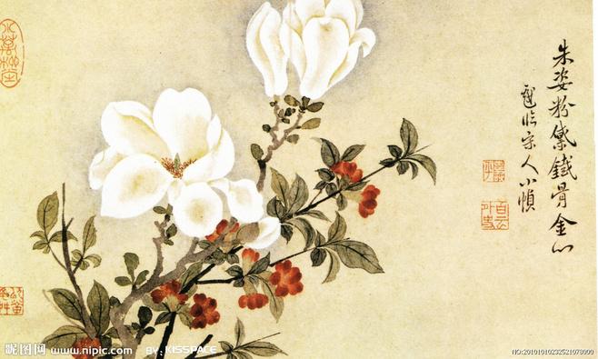 帮忙画一张茉莉花的手绘