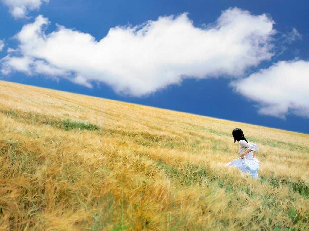 xp自带墙纸里面有一个穿着白色连衣裙在麦田里奔跑的背影图片,谁能图片