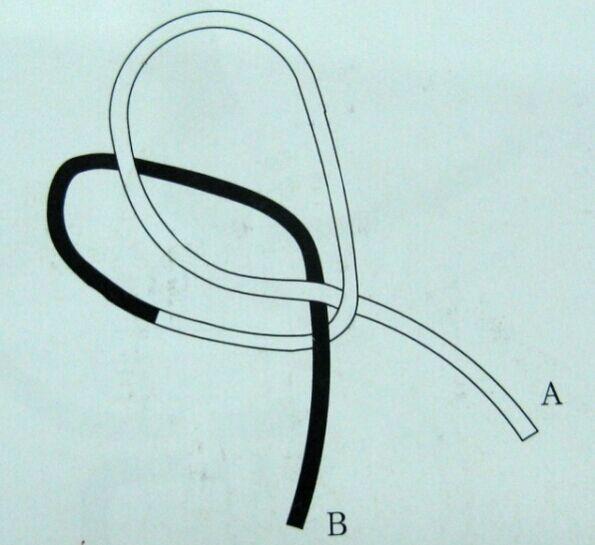 纽扣结的编法图解一:如图所示,把绳对折后,b端与a端分别做环.