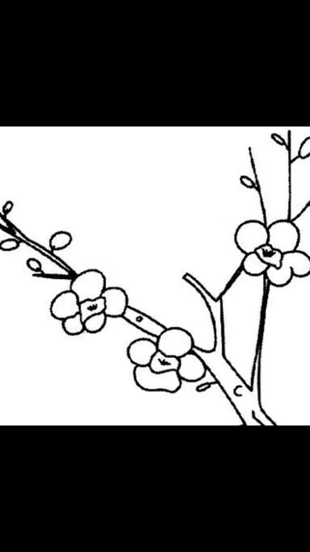梅花树简笔画图片3