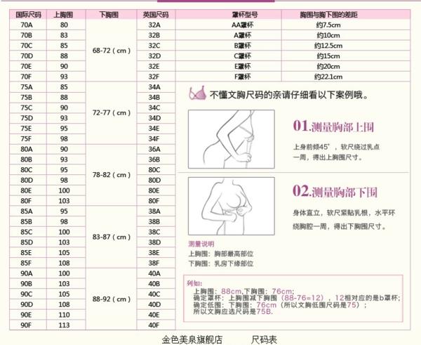 内衣尺码矢量图