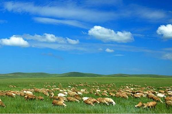 鄂尔多斯草原的介绍