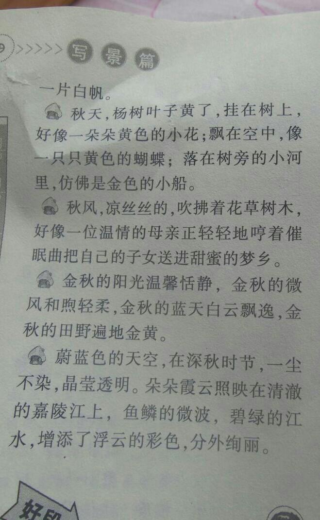 秋景摘抄150字3段甜高中景图片