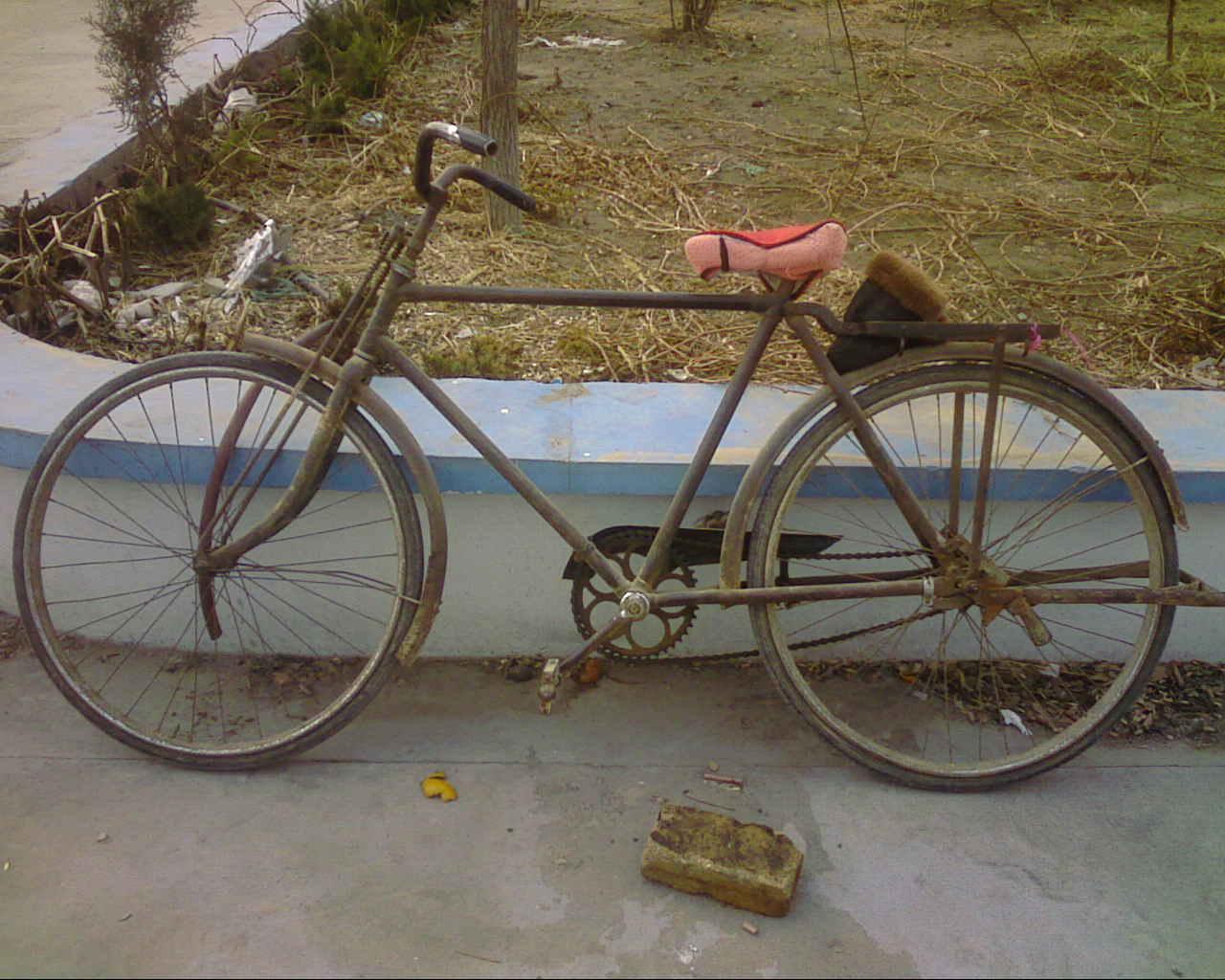 这种自行车,现在还有多少人骑?图片