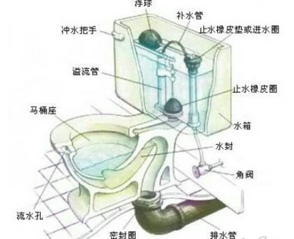 马桶结构图工作原理 马桶堵了怎么办图片