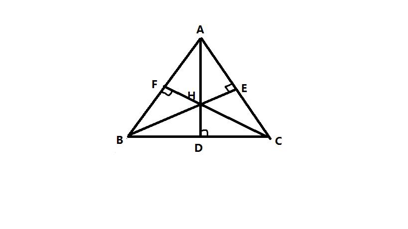 钝角三角形的高图片