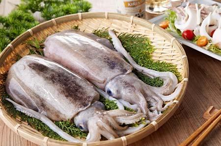 兔肉调经的催乳排骨汤做墨鱼丁要炒多久图片