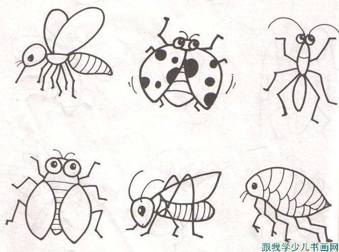 昆虫简笔画怎么画