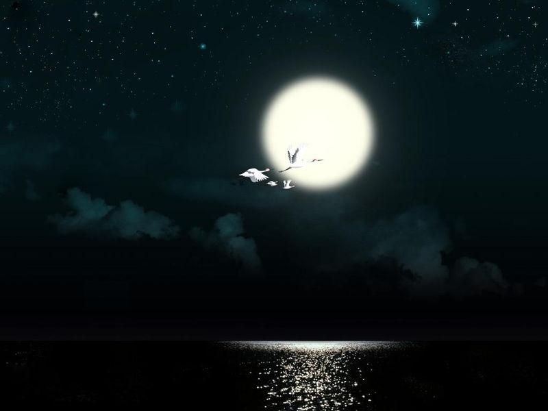 求唯美古风的月亮的图片,一定要有意境,速度呀谢啦