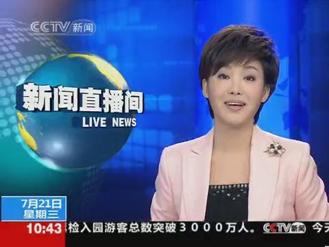 请问下面图片中的这位中央电视台女新闻主播叫什么?图片